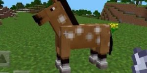 Trucos para Minecraft PE Pocket Edition